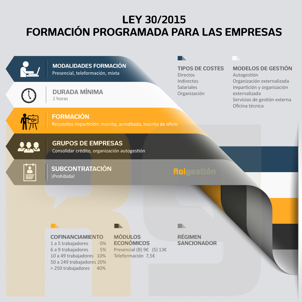 infografia-llei-es