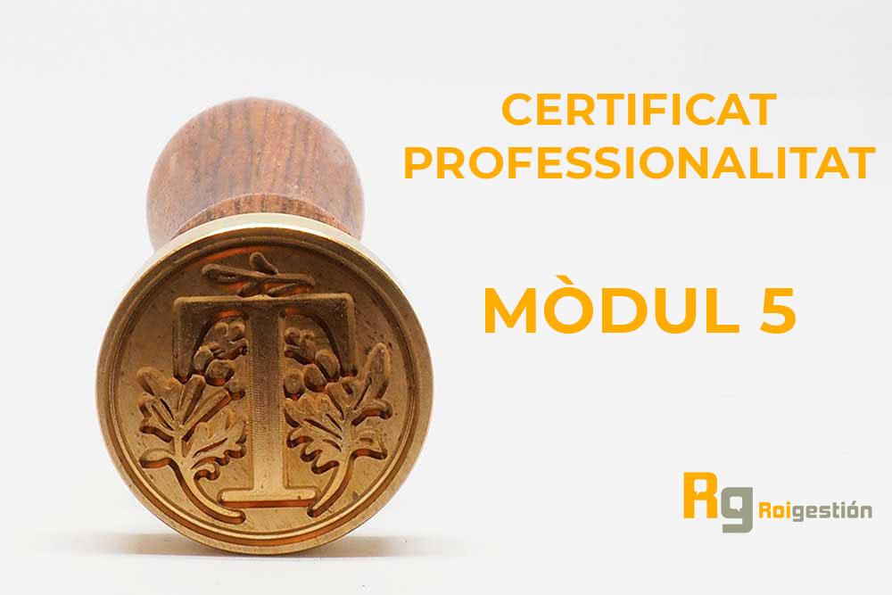 Certificat-de-Professionalitat-modul5